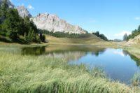Lac de montagne en été